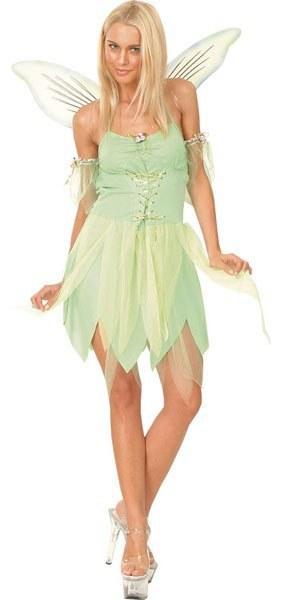 Plus Size Neverland Fairy Costume
