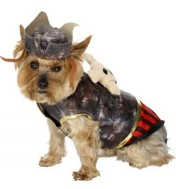 Pirate Pooch Costume