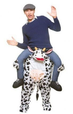 Carry Me cow