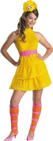 Big Bird Teen Costume