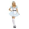 Budget Alice Costume