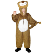 lion costume child