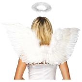 Angel accessory set