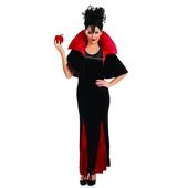 queen of evil costume