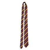 School Boy Wizard tie