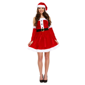 Adult Female Santa Costume