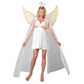 Radiant Angel Costume