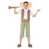Roald Dahl BFG Costume - Tween