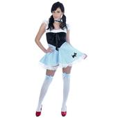 Ladies Dorothy Costume