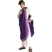 Deluxe julius caesar costume
