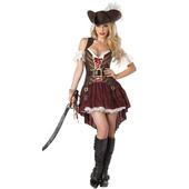 Sexy Swashbuckler Costume