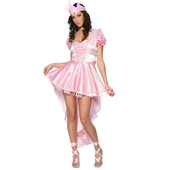 Glinda Ballerina Ladies Fancy Dress