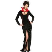 Spider Widow Costume