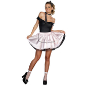 Ladies Fabulous 50's Costume