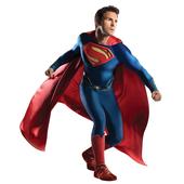 Grand Heritage Superman