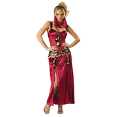 Elite Desert Dancer Costume