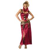 Elite Desert Dancer Costume