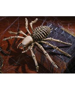 skele spider decoration