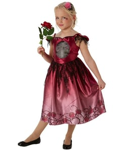 Rags & Roses Costume - Kids