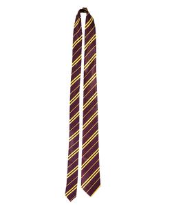 School Boy Wizard tie