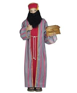 teen wise man costume