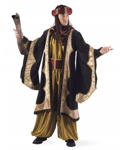 Royal Knight Costume