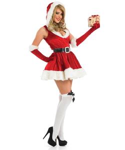 Sexy Lady Santa Costume