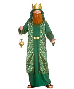 Tween Green Wise Man Costume
