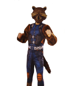Guardians Of The Galaxy Vol 2 Rocket Raccoon Costume - Kids