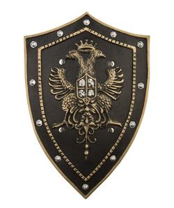 Gold Foam Shield