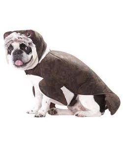 Animal  Planet Walrus Dog Costume