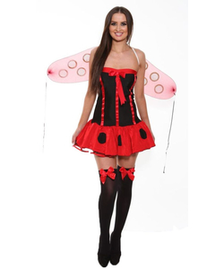 2 Piece Lady Bug Costume
