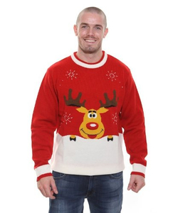 Novelty Christmas Jumper