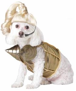 Pop Queen Dog