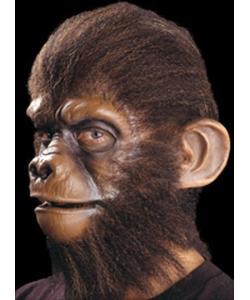 Special Effects - Monkey Ears