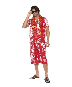 Hawaiia Hunk Costume