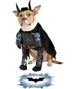 pet batman costume