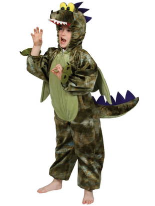 Dinosaur costume - tween
