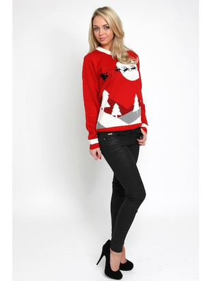 Ladies Sleigh Jumper