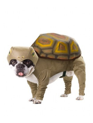 Animal Planet Tortoise Dog costume
