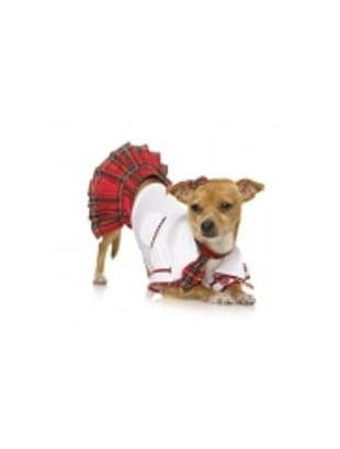 School Puppy Costume
